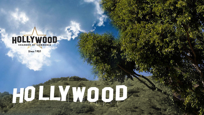Get Your Business Involved with the Hollywood Chanber of Commerce