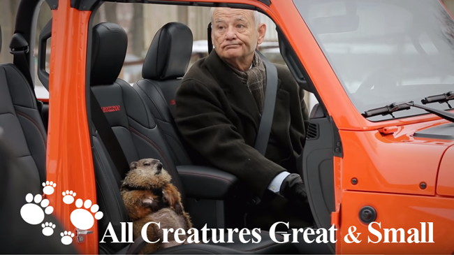 "BEHIND THE SCENES: ACG&S\'s Groundhog ""Poppy"" Stars in Super Bowl Commercial"