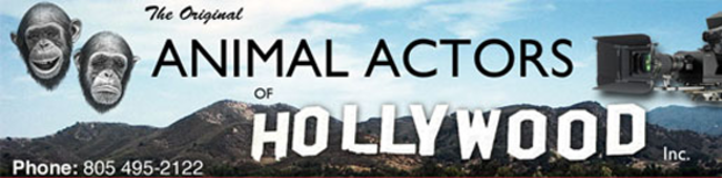 Animal Actors of Hollywood with Over 50 Years in the Industry
