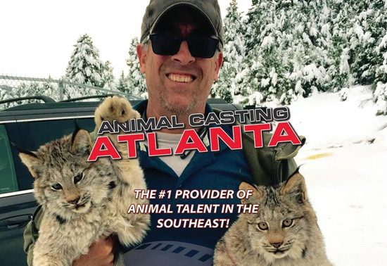 Animal Casting Atlanta Serving the Southeast