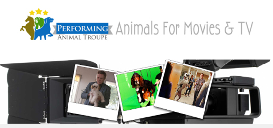 Performing Animal Troupe Has Over 30 Years Experience