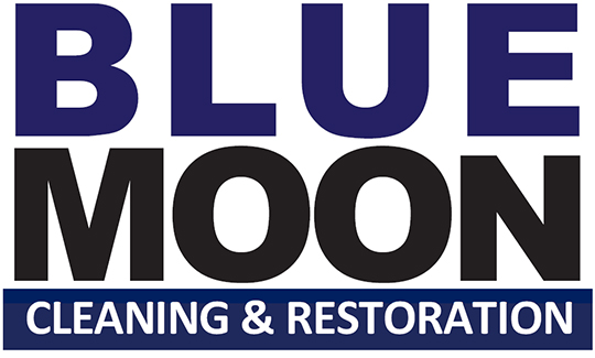 BLUE MOON FIGHTS COVID SPREAD AMONG LA\'s TV & FILM INDUSTRY WITH AIR SCRUBBER & HYDROXYL GENERATOR RENTALS