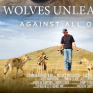 INSTINCT, Animals for Film announces Wolves Unleashed