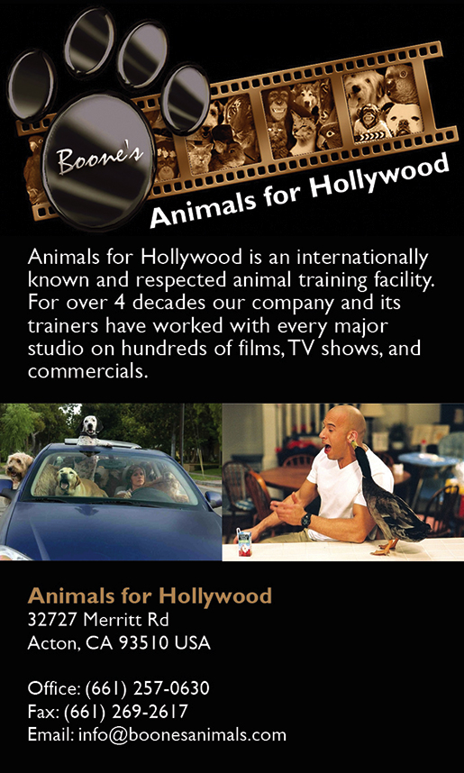 ANIMALS FOR HOLLYWOOD
